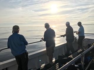 Recreational Sea Anglers UK